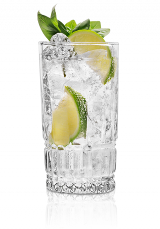 st_germain_gin-tonic